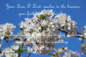 Praise in Prayer- Psalm 36:5-6