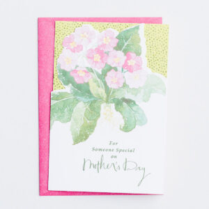 Mother's Day - For Someone Special on Mother's Day - 1 Premium Card Honor a special mother on Mother's Day by expressing your appreciation for who she is with this Christian Mother's Day greeting card from DaySpring.Cover:For Someone Special on Mother's DayInside:Just to let you know how special you are and how much appreciation I hold in my heart for you.I hope your Mother's Day will be extra-blessed.Scripture:Bless you in God's name! Psalm 129:8 The MessageProduct Details:1 card and 1 envelopeThe Message Scripture textCard features die-cut