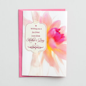 Mother's Day - A Joy-filled Day - 3 Premium Cards Bless a special mom on Mother's Day with words of encouragement and inspiration and let her know how special she is to you and others.Cover:Wishing you a Joy-filled